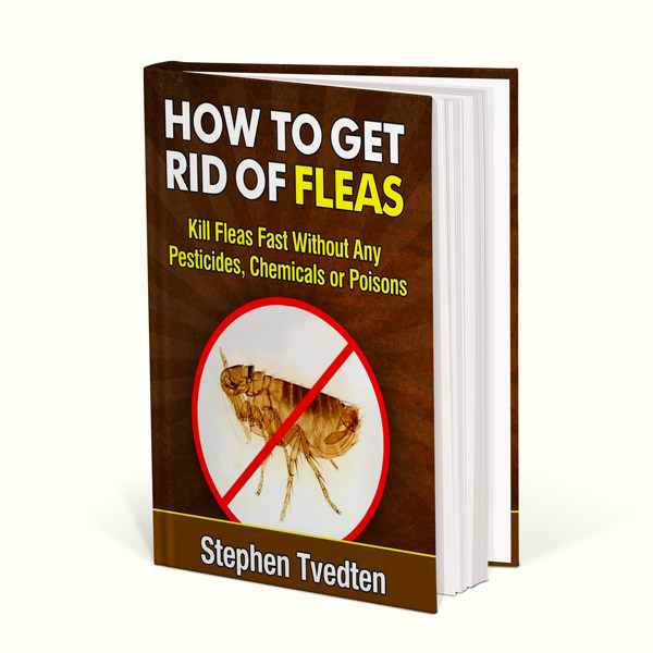 how to get rid of fleas book by stephen tvedten